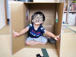 box_house.JPG