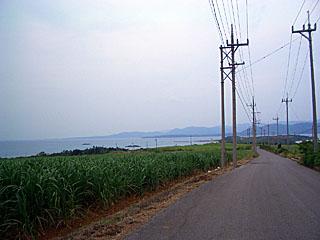 小浜島 細崎を臨む