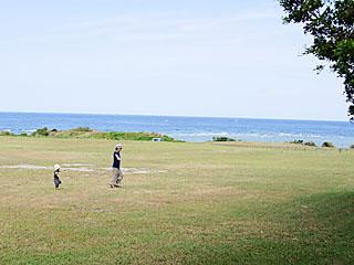 okinawa_2011_01.jpg