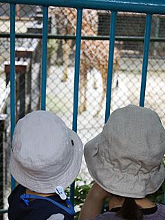zoo_20110612.jpg